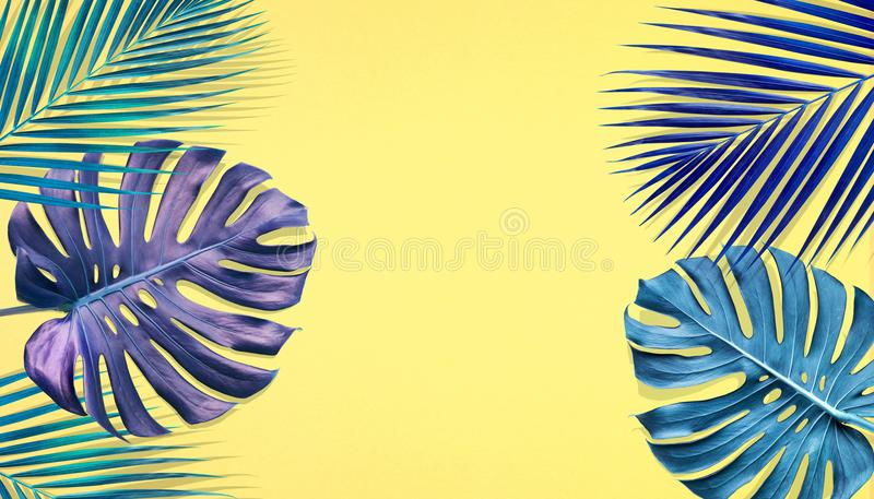 Tropical palm leaves and monstera with copy space on pastel color royalty free illustration