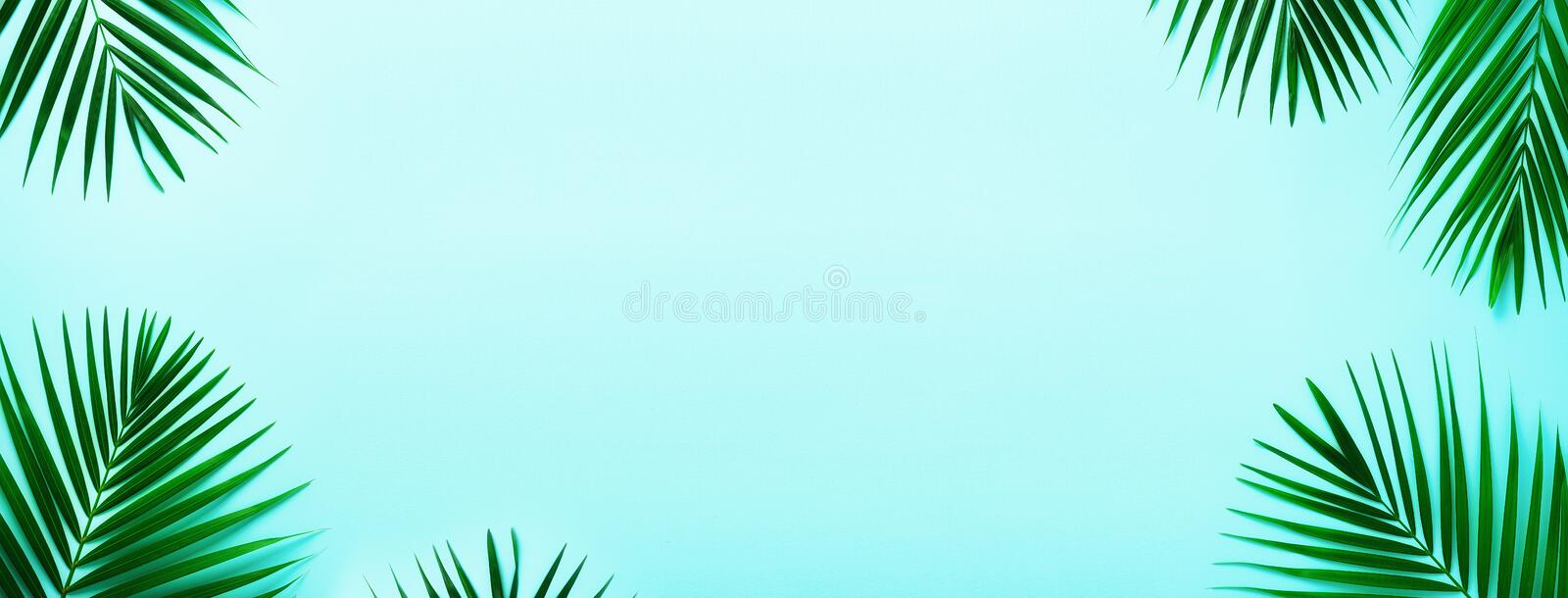 Tropical palm leaves on pastel turquoise background. Minimal summer concept. Creative flat lay with copy space. Top view. Green leaf on punchy pastel paper stock photos
