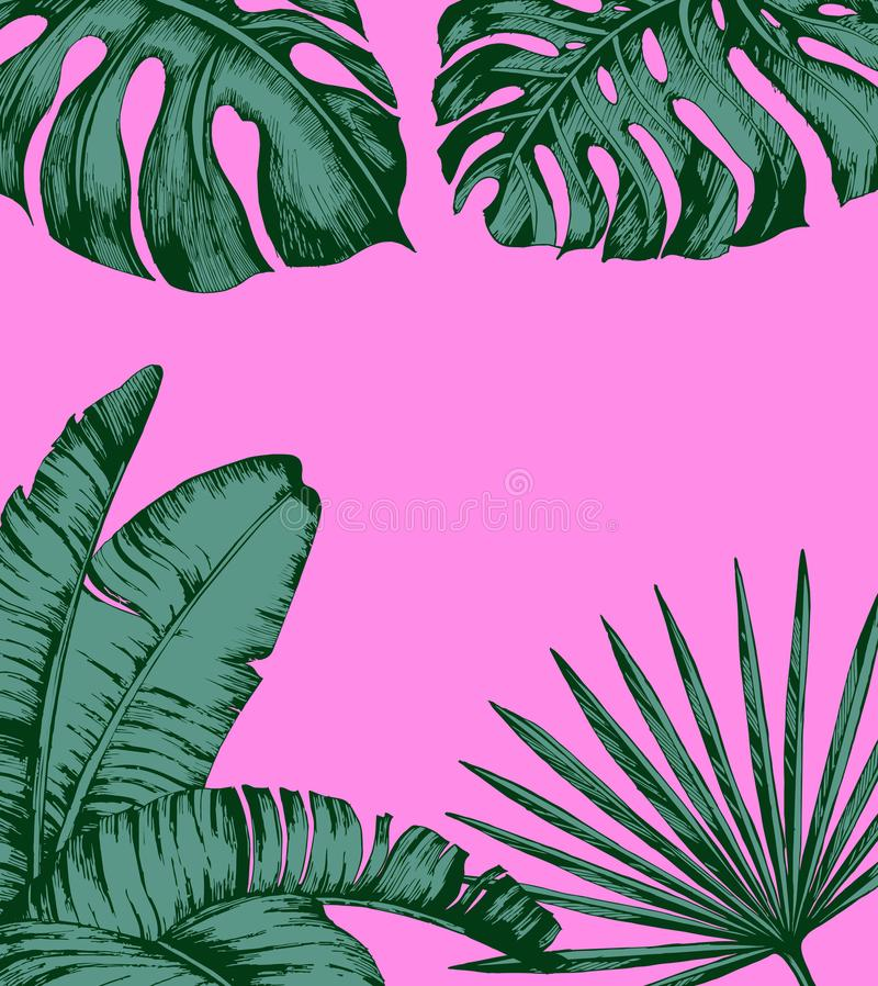 Tropical palm leaves on pink background. Minimal nature summer concept. Flat lay. Trendy Summer Tropical Leaves Vector. Design stock illustration