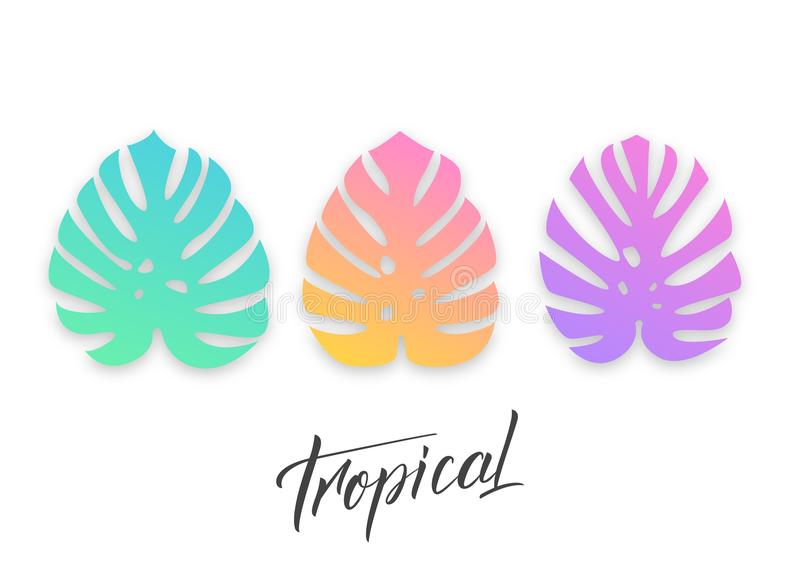 Tropical palm leaves. Set of modern vibrant exotic monstera leaves.  royalty free illustration
