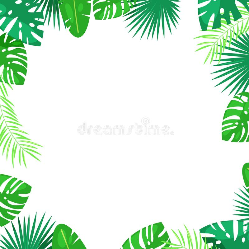 Tropical palm leaves vector square frame. White background with place for text. Jungle summer cartoon illustration. stock illustration