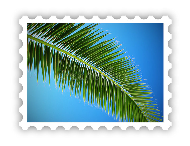 Download Tropical Palm Postage Stamp Stock Illustration - Image: 6837019