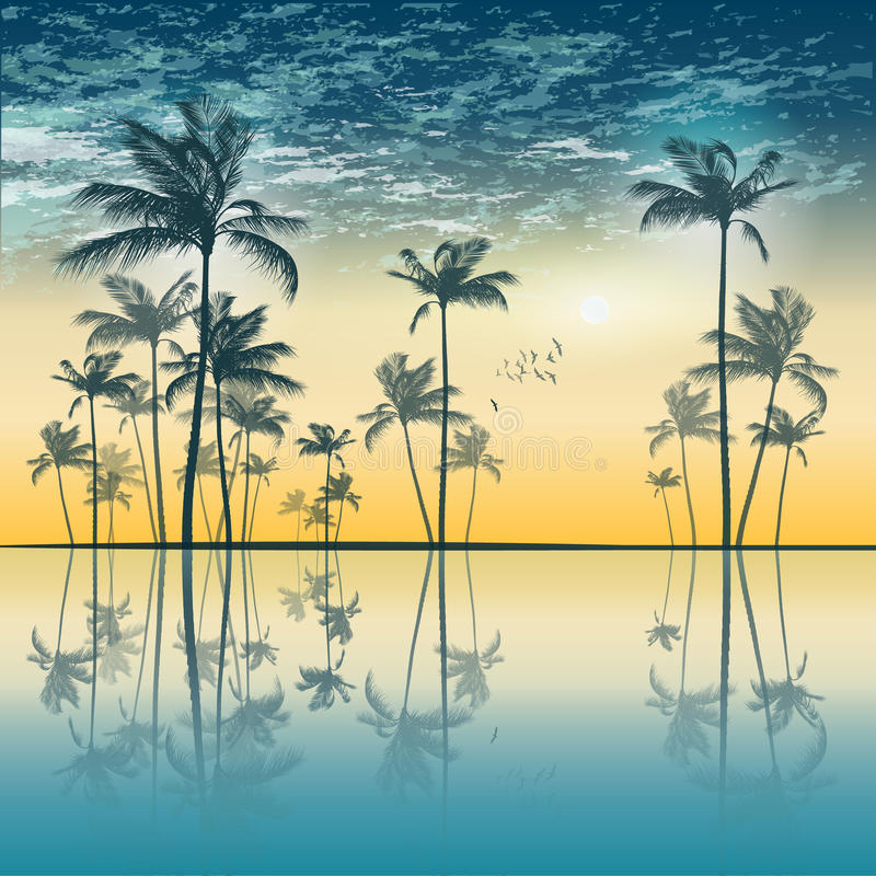 Free Tropical Palm Tree Silhouette At Sunset Or Moonlight, With Clou Stock Photo - 85008550