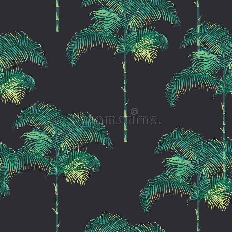 Tropical Palm Trees Background vector illustration