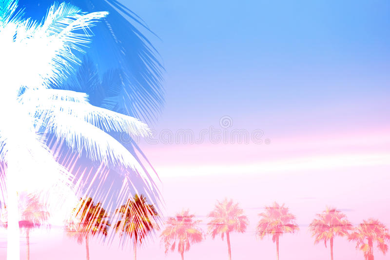 Tropical Palm Trees Collage. A montage of tropical palm trees over a sunset sky with plenty of negative space stock illustration