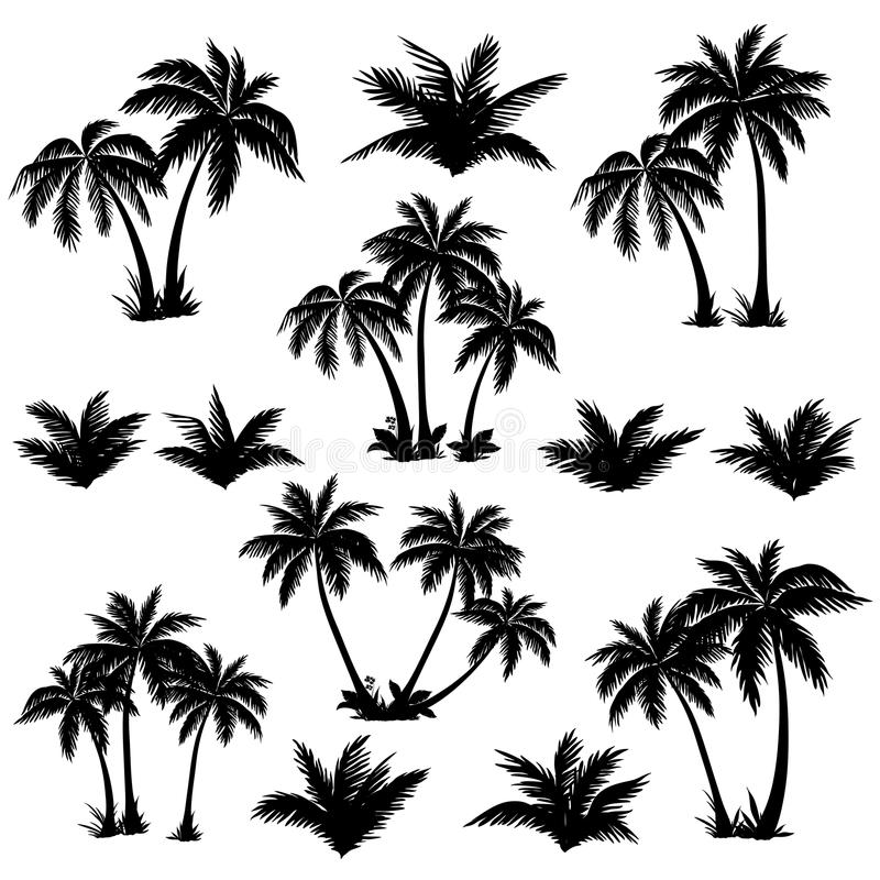 Tropical palm trees set silhouettes stock illustration