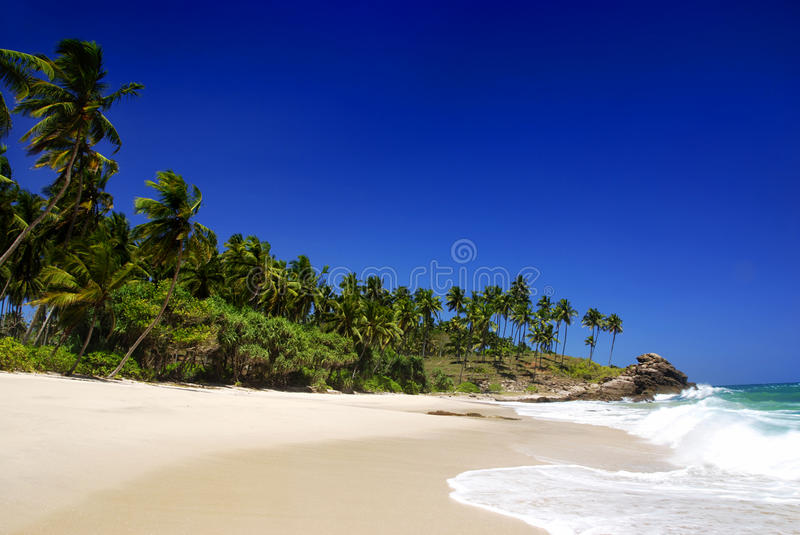 Download Tropical paradise stock photo. Image of scenery, sand - 15247050