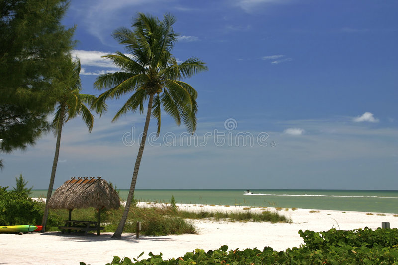 Download Tropical Paradise stock photo. Image of boat, tree, resort - 1708814