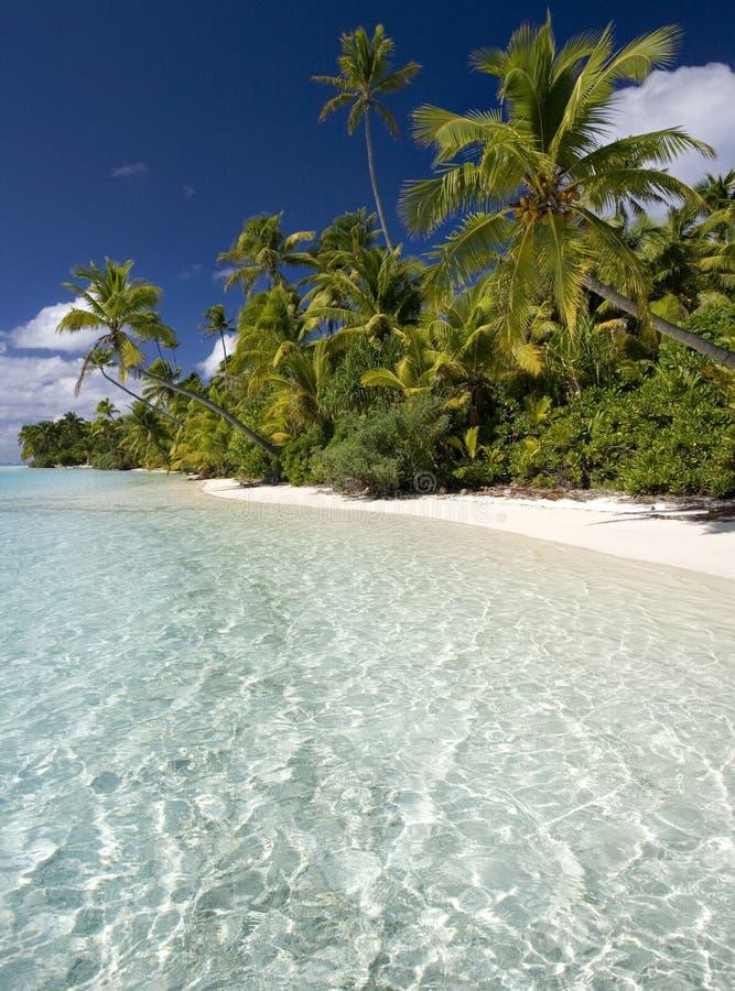 Tropical Paradise - Aitutaki - Cook Islands royalty free stock photos