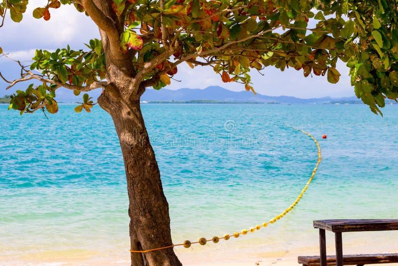 Tropical paradise beach background royalty free stock photo