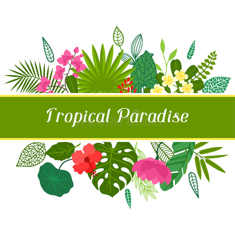 Tropical paradise card with stylized leaves and vector illustration