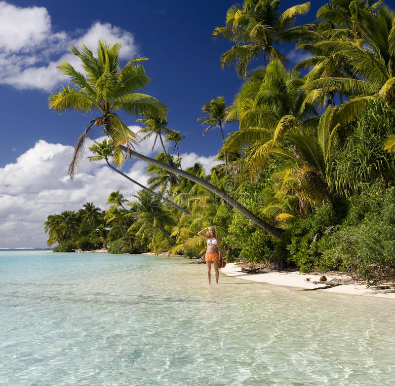 Tropical Paradise - The Cook Islands royalty free stock photo