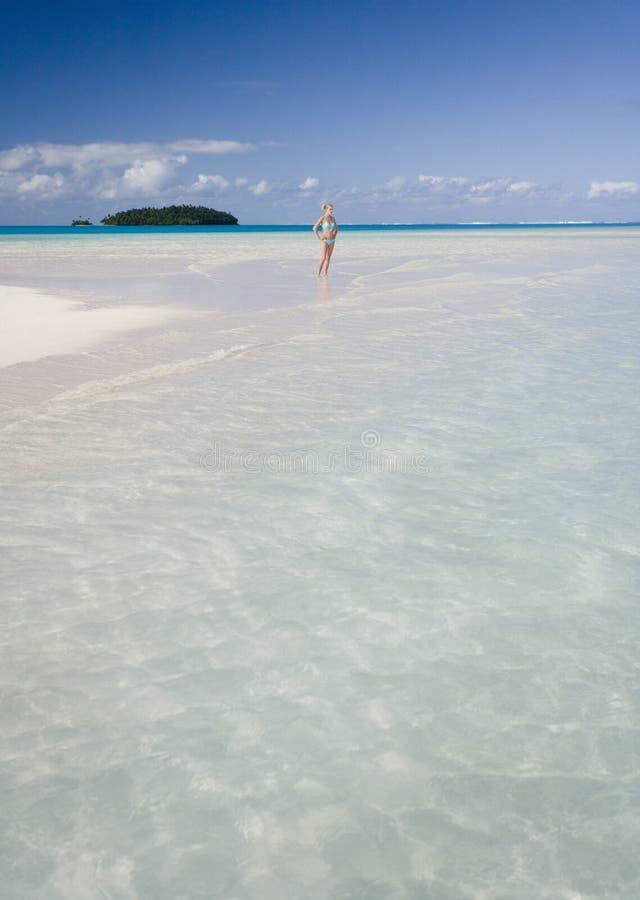 Tropical Paradise - Fiji royalty free stock photo