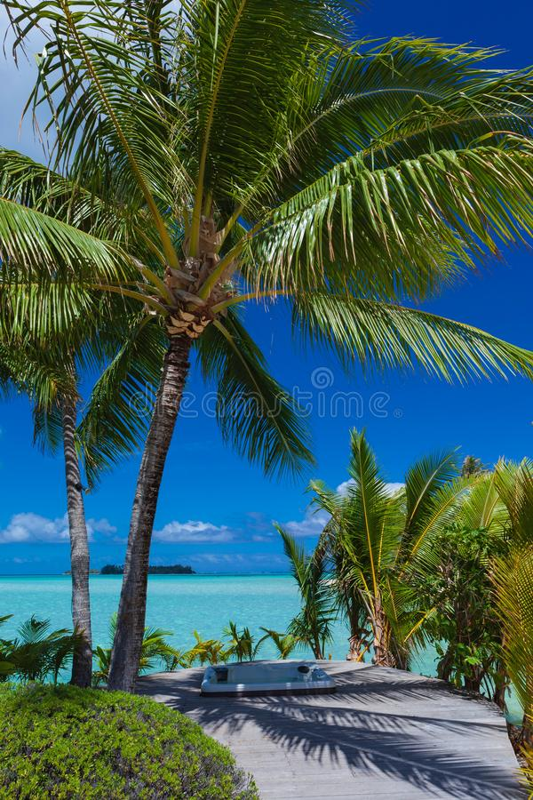 Tropical Paradise Getaway stock images