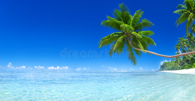Tropical Paradise Island Beach Sea Concept.  stock image