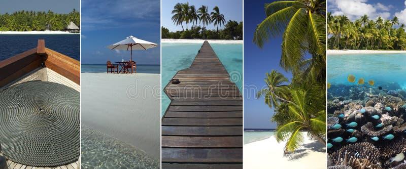 Tropical Paradise - The Maldives royalty free stock photo