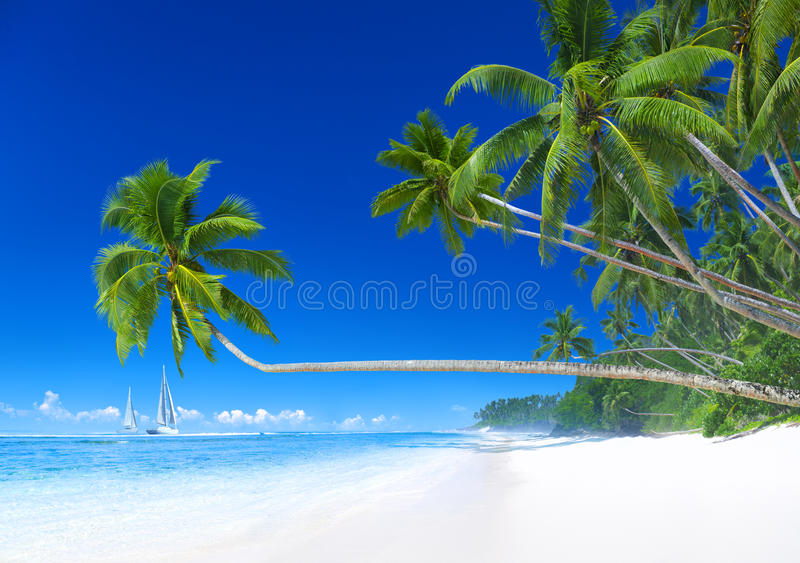 Tropical Paradise Sailboat Summer Vacation Concept royalty free stock image