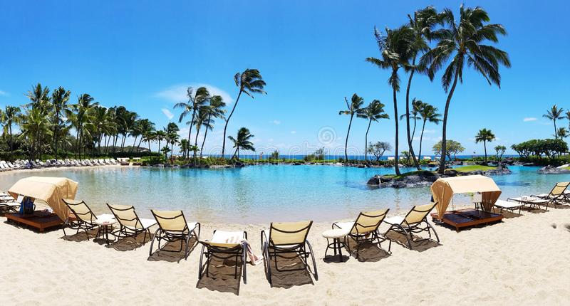 Tropical paradise scene with beach chairs lined up around a swimming pool in Hawaii royalty free stock photo