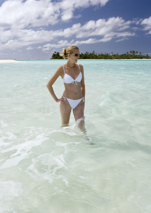 Download Tropical Paradise - Tahiti In French Polynesia Stock Photo - Image: 15084082