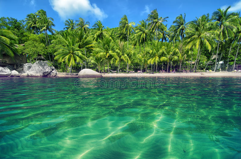 Tropical Paradise with Turquoise Water and Lush Greener royalty free stock image