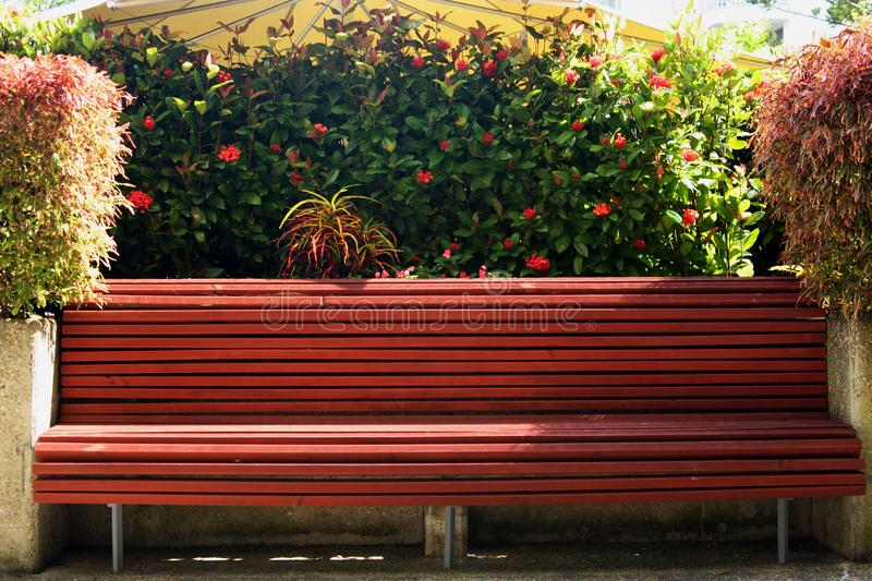 Tropical park bench royalty free stock photo