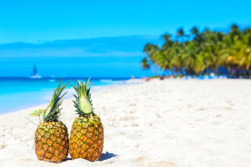 Tropical pineapples cocktails pina colada on caribbean beach with palms and ship. Saona island, Dominican Republic. Travel. Vacation background royalty free stock image