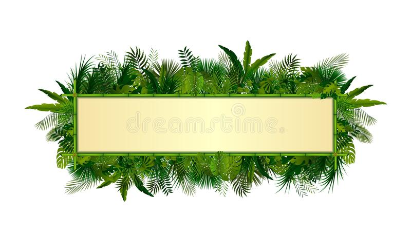 Tropical plants background. rectangle floral frame with space for text in concept bamboo royalty free illustration