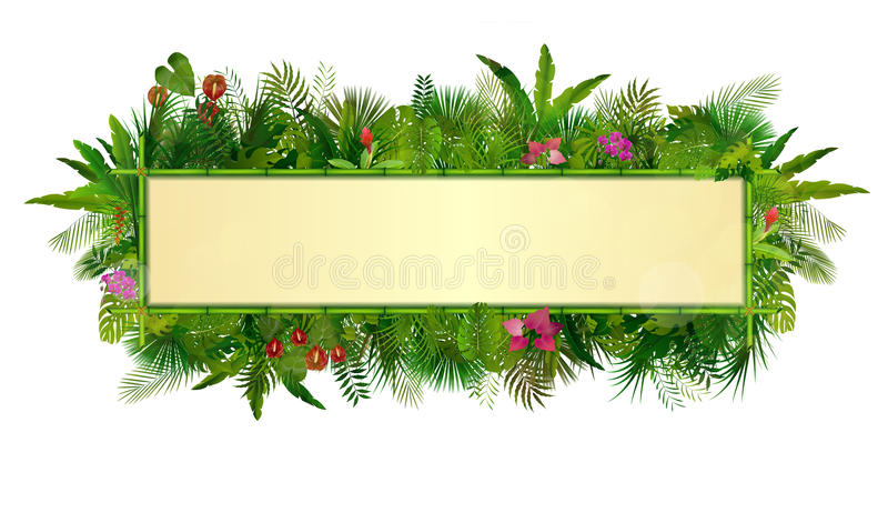 Tropical plants background. rectangle floral frame with space for text in concept bamboo vector illustration