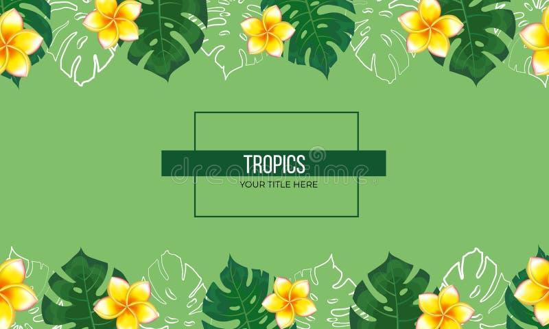 Tropical plants frame vector illustration
