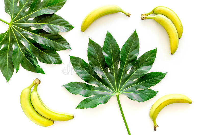 Download Tropical Plants Huge Leaves And Bananas On White Background Top View Stock Photo