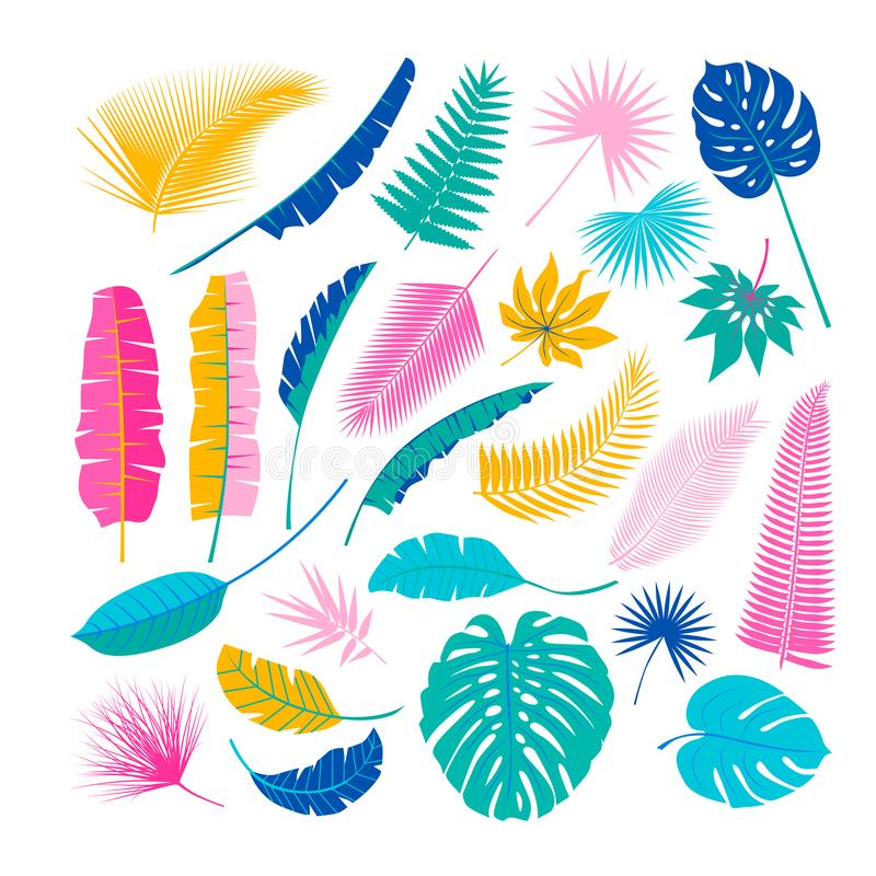 Tropical plants, leafs. Summertime nature objects. Jungle, Hawaii, Tropics. Flat design, royalty free illustration