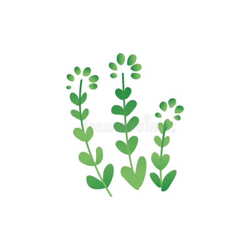 Tropical or prehistoric period plant flat vector illustration isolated on white. royalty free illustration