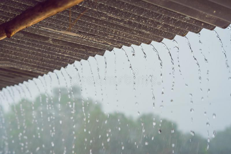 Tropical rain breaks down from the roof royalty free stock images