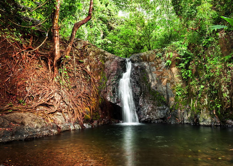 Tropical rain forest landscape with small waterfall. Vang Vieng, Laos stock photos