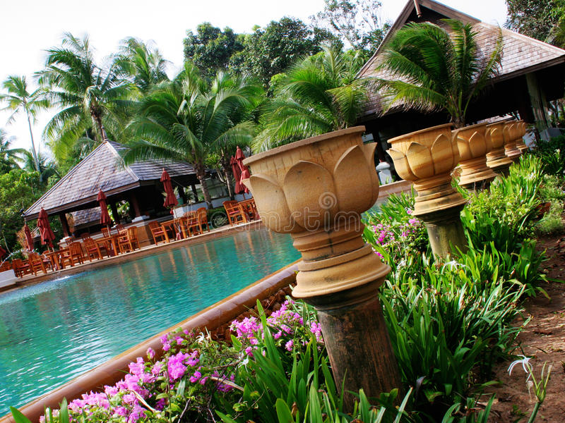 Download Tropical resort stock photo. Image of gorgeous, plant - 10534174