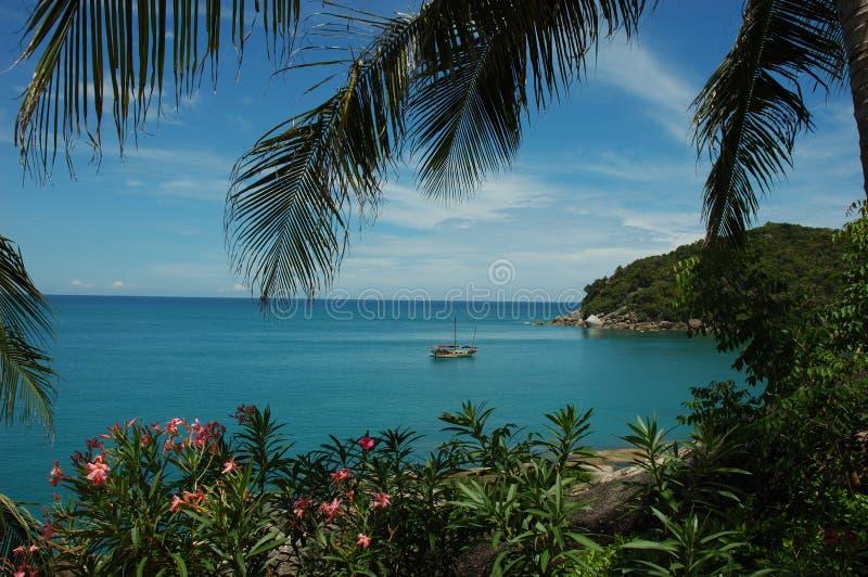 Tropical Resort stock image