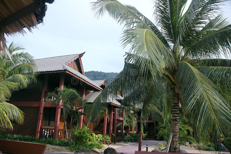 Tropical Resort. Resort chalets near tropical rainforest royalty free stock images