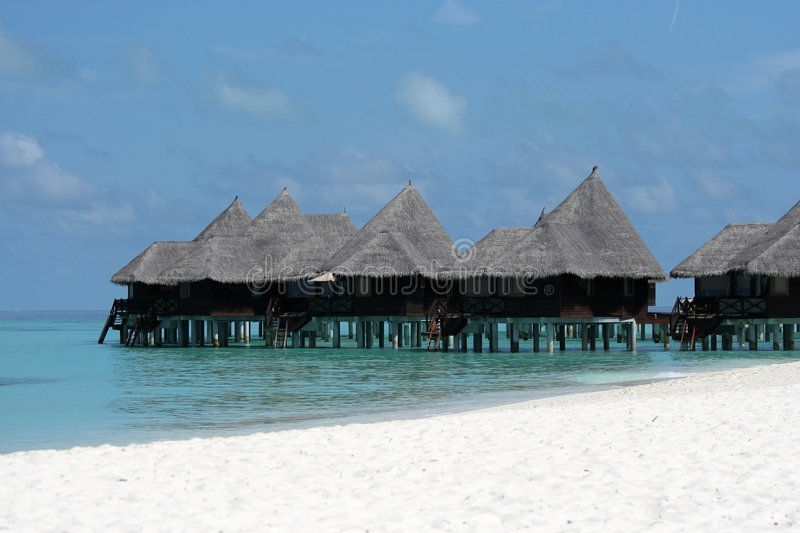 Download Tropical resort stock photo. Image of exotic, bungalow - 4828124