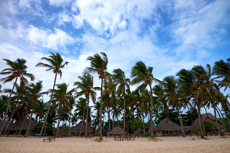 Tropical resort. Beautiful tropical coastline with palms, sand and cabanas royalty free stock photo