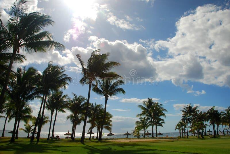 Tropical resort. Mauritius stock image