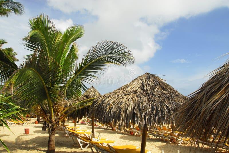 Tropical resort in Punta Cana royalty free stock image
