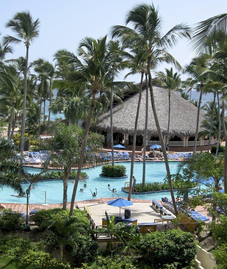 Tropical Resort Swimming Pool stock images