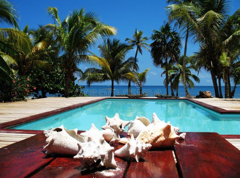 Download Tropical Resort Swimming Pool View Stock Photo - Image: 15243686
