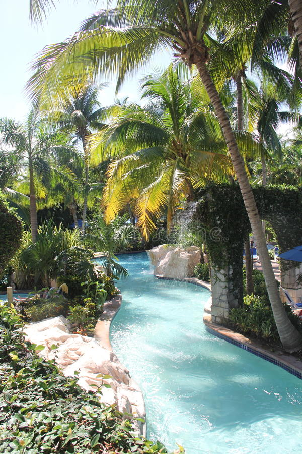 TROPICAL RIVER AT ROSE HALL MONTEGO BAY JAMAICA royalty free stock photo