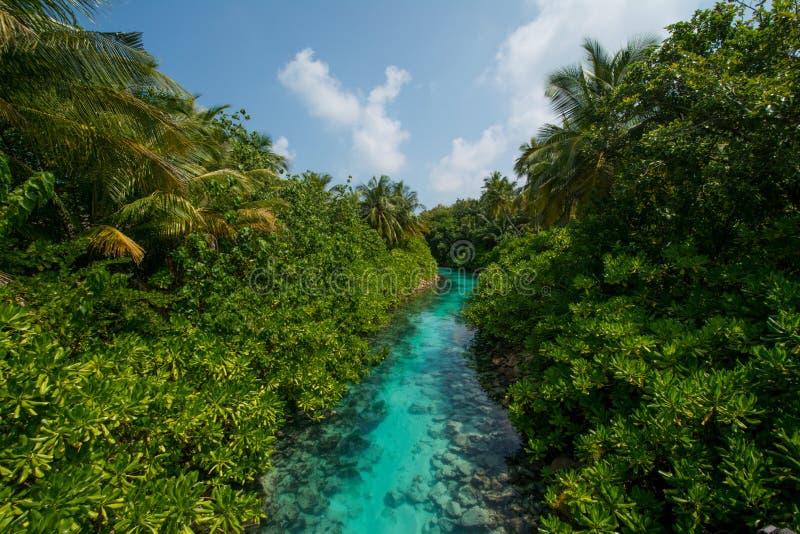 Tropical river view from the bridge at Maldives. Tropical river view from the bridge between islands at Maldives stock images