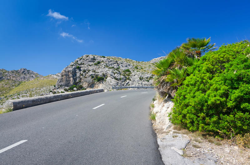 Tropical Road Curve Stock Image