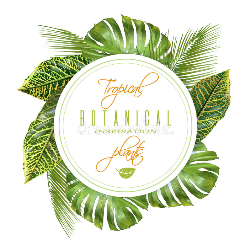 Tropical round banner vector illustration