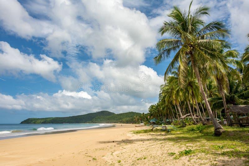 Tropical sandy beach in El Nido Philippines. Palawan Island in Southeast Asia. The sandy sea beach royalty free stock photo