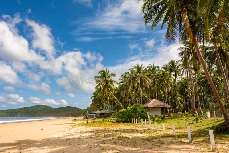 Tropical sandy beach in El Nido Philippines. Palawan Island in Southeast Asia. The sandy sea beach stock photo
