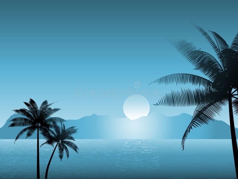 Download Tropical scene at night stock vector. Illustration of illustration - 10106162